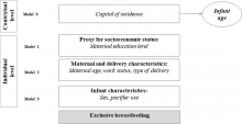Exclusive breastfeeding changes in Brazil attributable to pacifier use      Gabriela Buccini ,     Rafael Pérez-Escamilla ,     Maria Helena D'Aquino Benicio ,     Elsa Regina Justo Giugliani ,     Sonia Isoyama Venancio  Exclusive breastfeeding changes in Brazil attributable to pacifier use